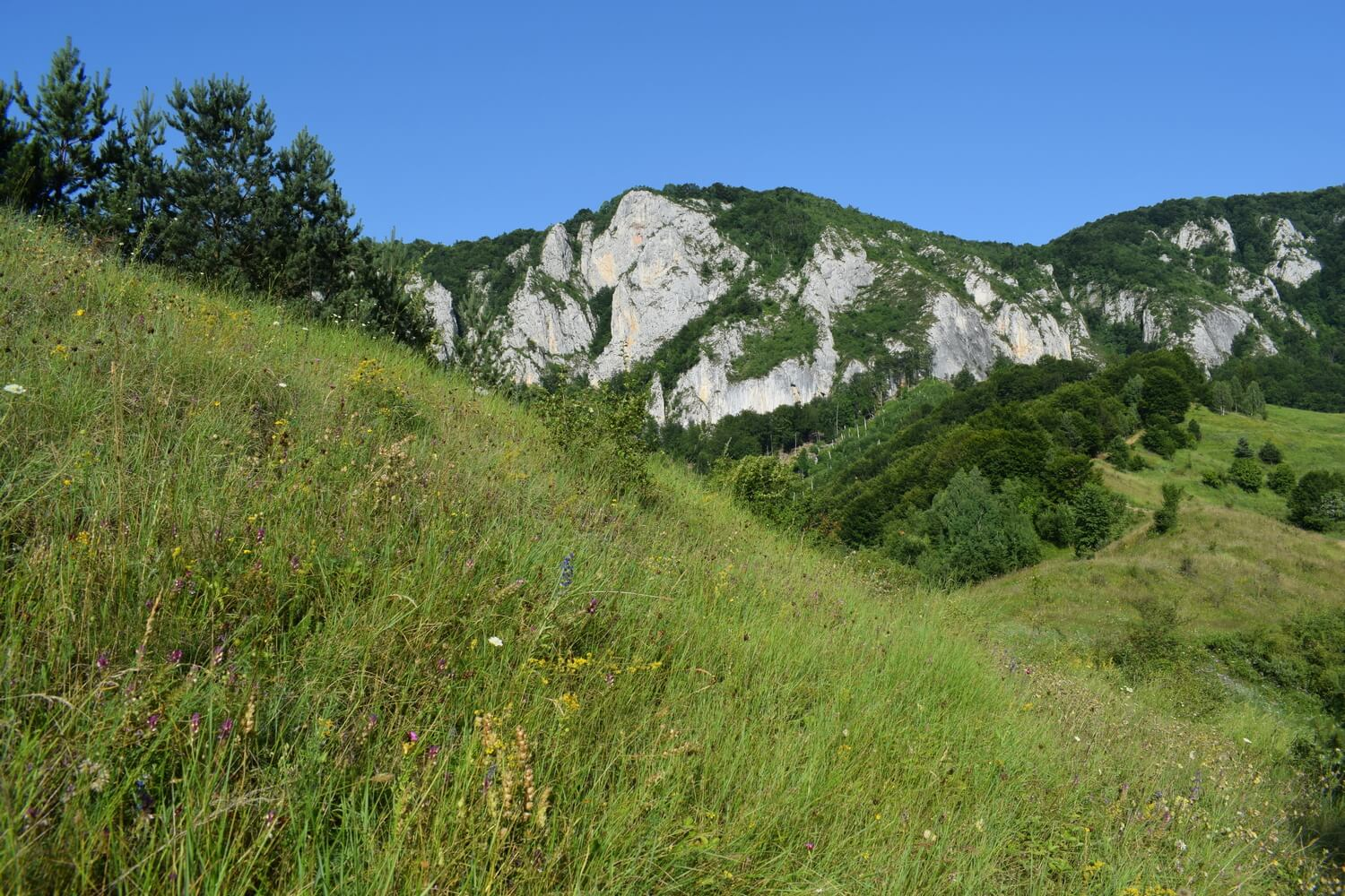 cliff view in Apuseni Mountains
