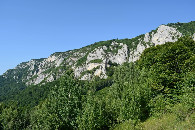 Apuseni Mountains Trascau